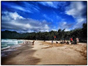 Dr.ビーチが選ぶ 全米ベストビーチ10にハワイイから3ヶ所が選ばれる